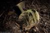 Khối đá này có thể là vật còn sót lại của ngôi đền được xây ở Bạch Thành hàng nghìn năm trước. Ảnh: National Geographic.