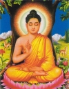 Phật Thích Ca là giáo chủ cõi Ta bà (đau khổ) – là thế giới mà chúng ta đang sống.